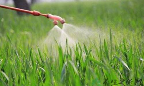 Brazil accelerates approval of agrochemicals, releases 28 new registrations in January 2019