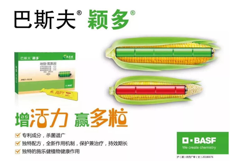 巴斯夫创制新品颖多®登陆中国  大田杀菌剂市场的制高点再度升级