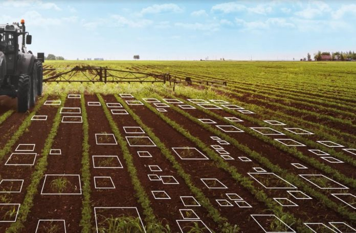 Launched in Brazil, Artificial Intelligence Cl4udIA, seeks to save up to 60% in pesticides