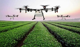 India government signs deal with IBM to use AI, weather technology in agriculture