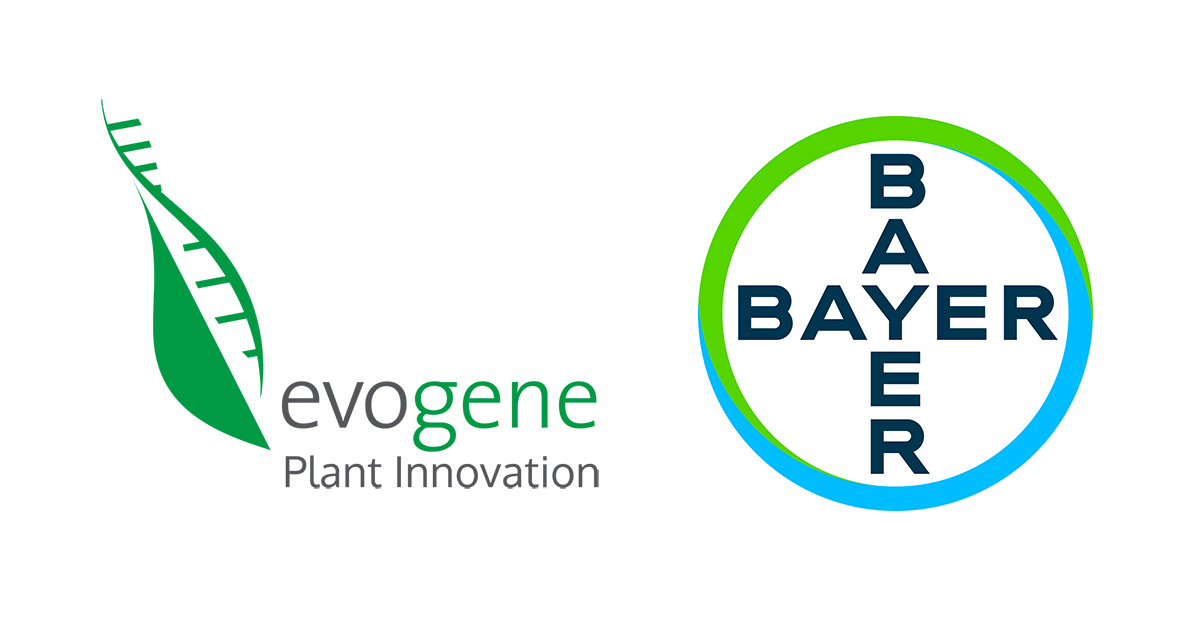 Evogene amends its collaboration agreement with Bayer to include genome editing targets