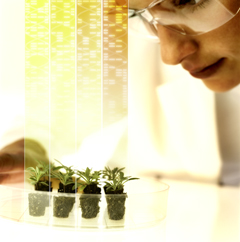 Bayer opens application window for Grants4Traits and Grants4Biologicals