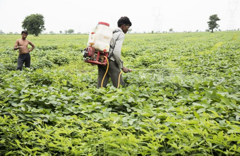 'Agrochemicals are safe; battling against diseases and climate change'