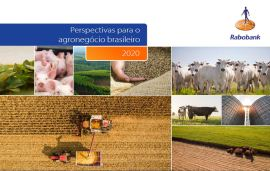 Rabobank projects pesticide sales to exceed US$ 11.5 billion in 2019 in Brazil, up 11%
