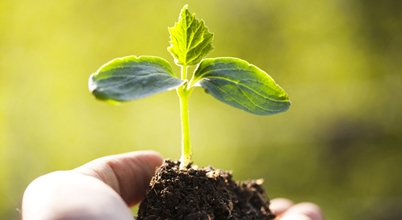 Biopesticides: Industry Emerging with Opportunities, Market Growing through Challenges