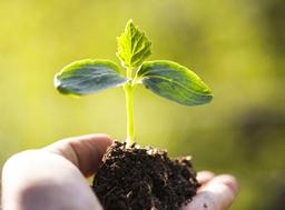 2019年全球生物农药热门事件及行业发展见解