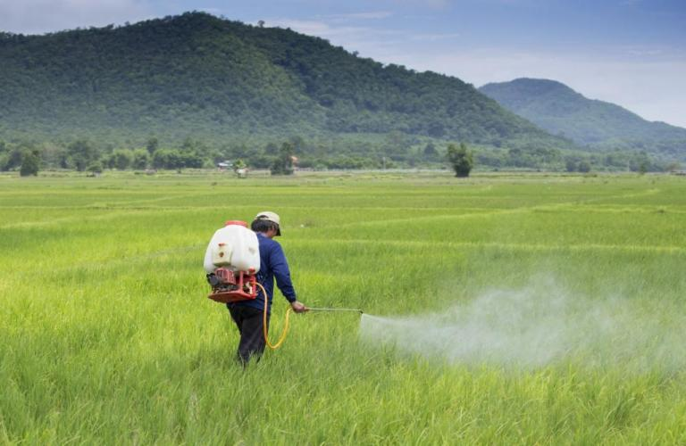 Banning 27 pesticides will hurt farmers' income, shrink exports revenue worth Rs 12,000 Cr