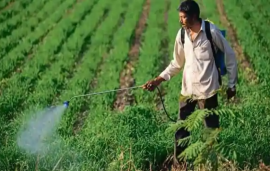 Agriculture ministry proposal to ban 27 pesticides faces resistance