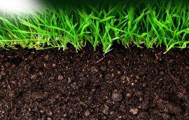 加了肥料增效物质就一定增效吗?