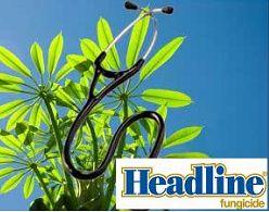 BASF: Headline杀真菌剂令种植者从中获益