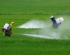 United Phosphorus acquires RiceCo in USA