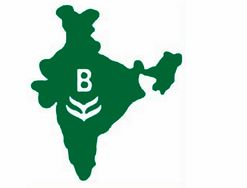 Bharat Rasayan seeking contracts/toll manufacturing for its new plant