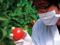 China issues MRLs for 85 pesticides in food