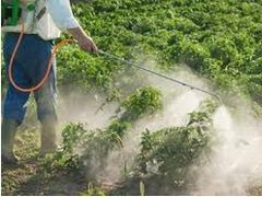 Anti-dumping Duty Application on Chinese-made Glyphosate Formulations Exported to Australia Unjustified
