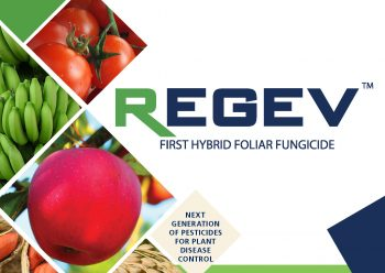 Hybrids: The future of crop protection – the case of STK Regev as the first hybrid fungicide