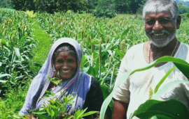 Lawrencedale Agro Processing India to introduce Tech platform to connect with more Farmers