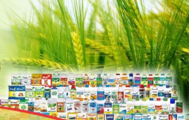 Another IPO on the way -- India Pesticides is looking to raise ₹800 crore
