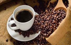 European Commission assessing the use of caffeine as insecticide