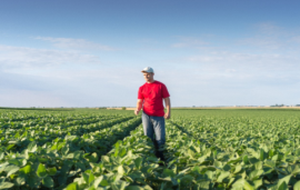 Raven Industries joins BASF and AGCO in industry-wide effort to eradicate on-farm pigweed
