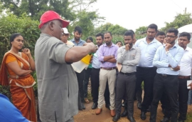 Fall Armyworm (FAW) control and management in Sri Lanka