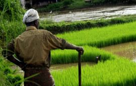 Why agro-chemicals is on a strong growth trajectory in India?