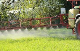 Glyphosate: EU regulators begin review of renewal assessments