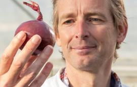 Onion genome finally reveals its secrets