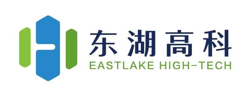 东湖高科logo 002.jpg
